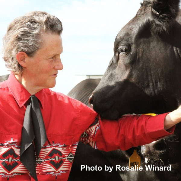Dr Temple Grandin Photo